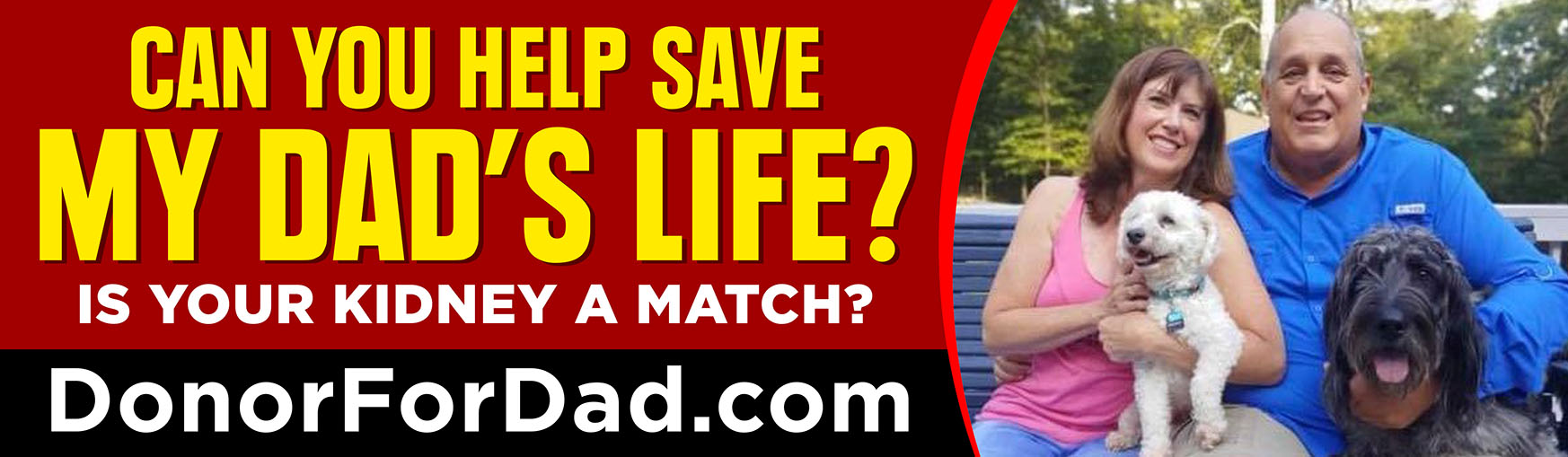 Save My Dad's Life